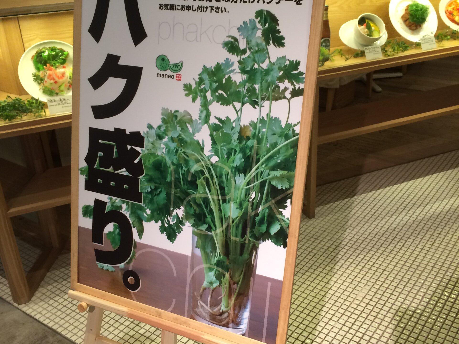 パクチー好き必見!【渋谷ヒカリエでオシャレランチ】Rice people, Nice people!
