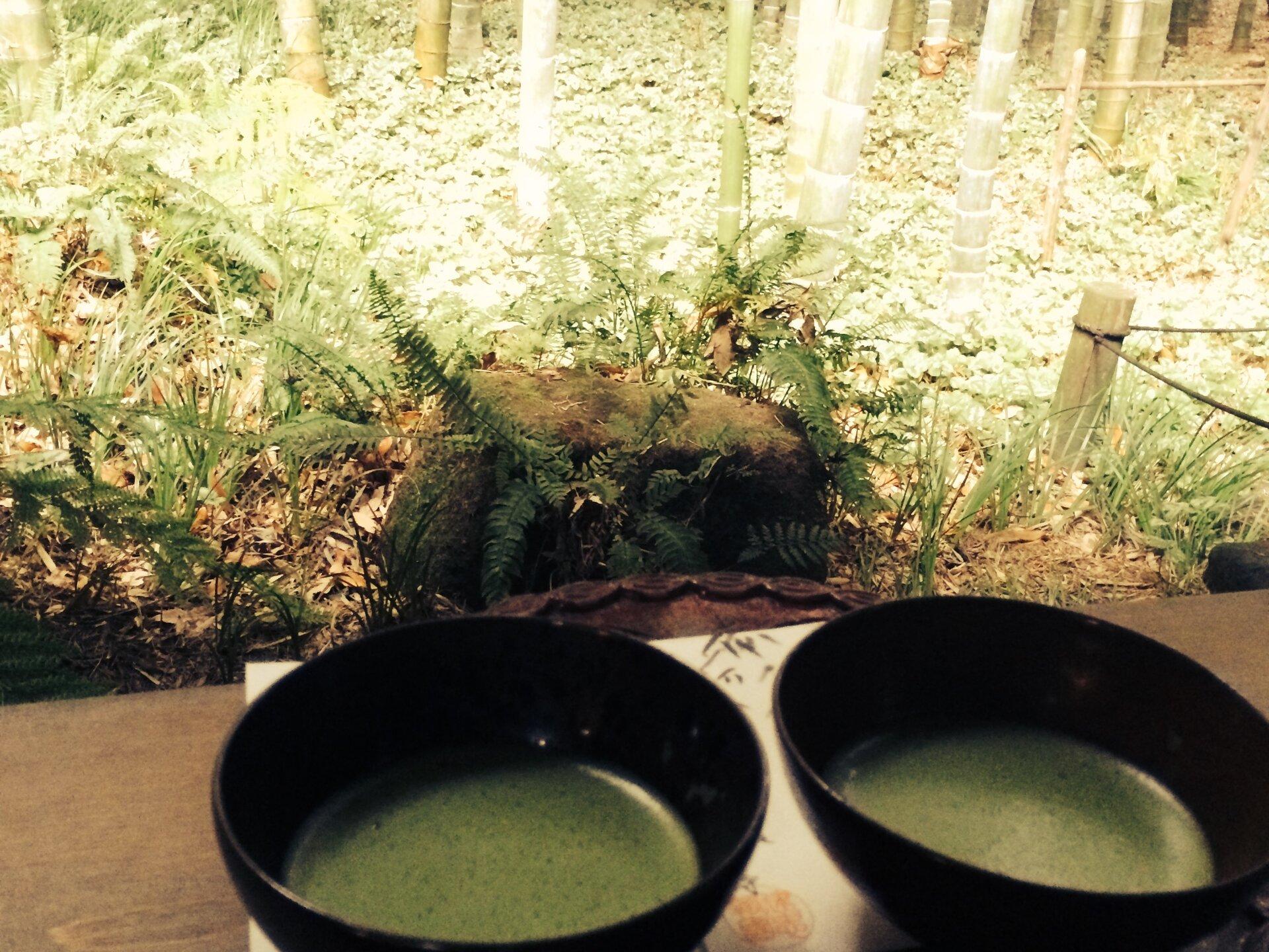 【鎌倉】竹林の中で抹茶を頂ける「報国寺」で自然を感じるのんびりデート