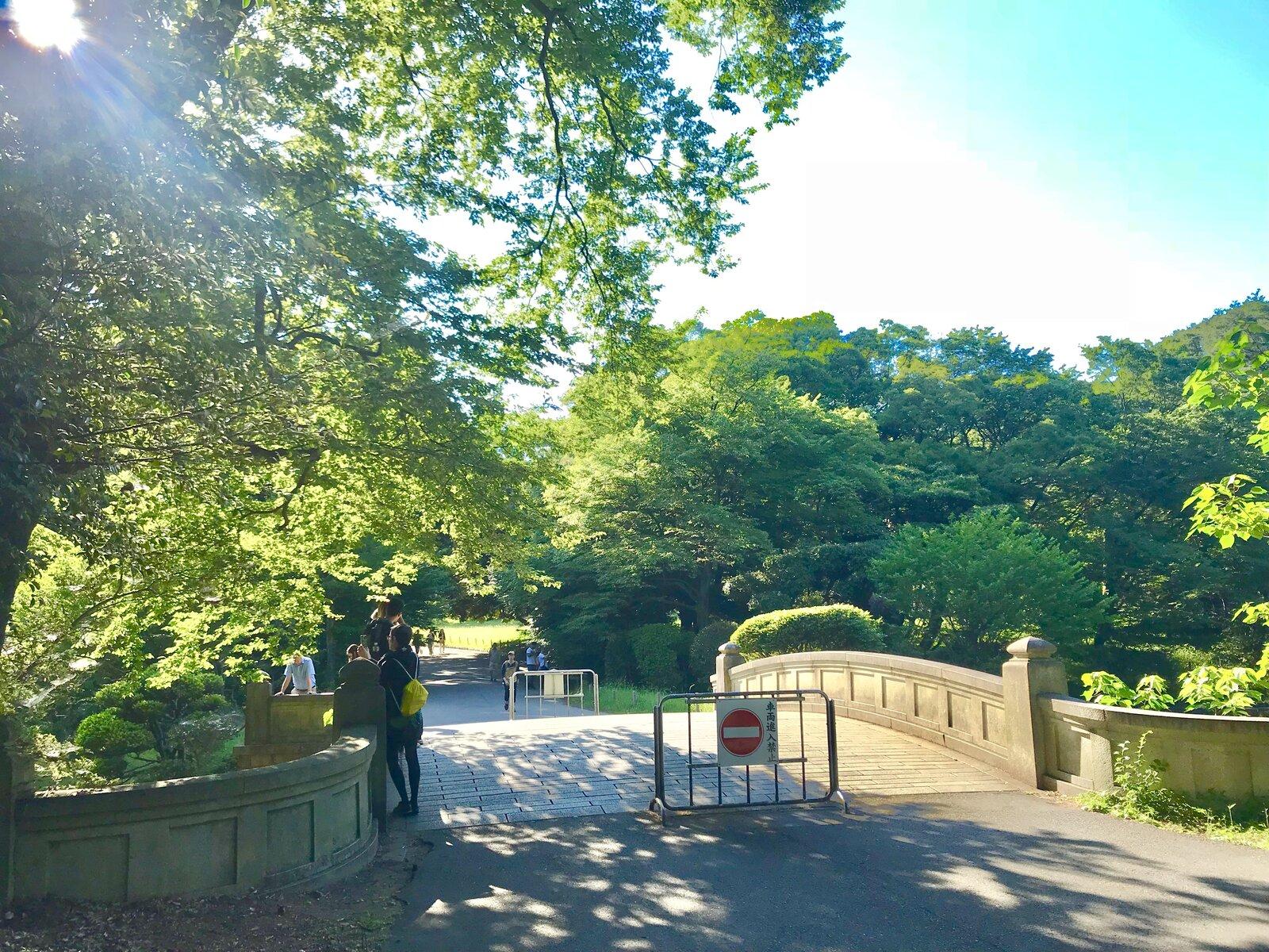 明治神宮 宝物殿前広場(芝生公園)